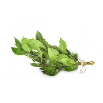 Laurel Menorca (bandeja)