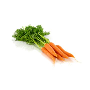 Zanahoria manojo Menorca