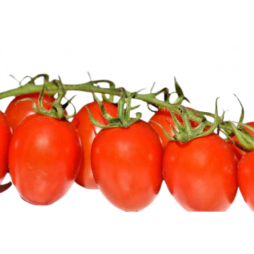 Tomate pera de Menorca