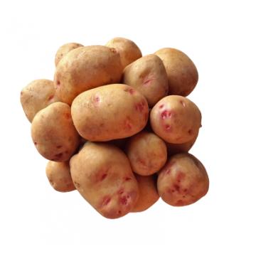 Patata de Menorca...