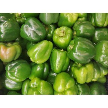 Pimiento verde de Menorca